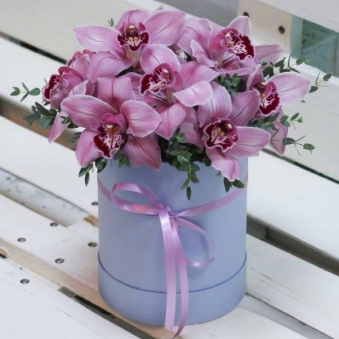 9 крупных розовых орхидей в коробке R020