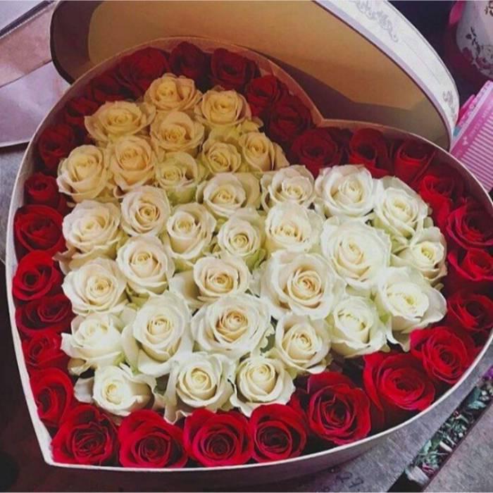 51 роза в коробке сердце R050