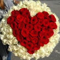 Большое сердце из красных и белых роз R003