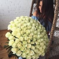 Букет 101 белая роза с лентами R017
