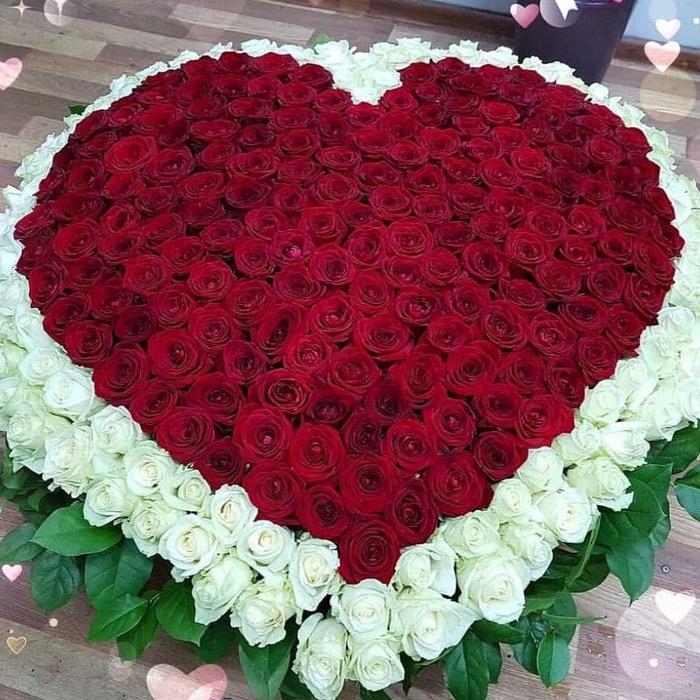 501 роза в форме сердца в корзине R083
