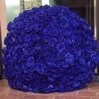 Букет 201 синяя роза с упаковкой R080