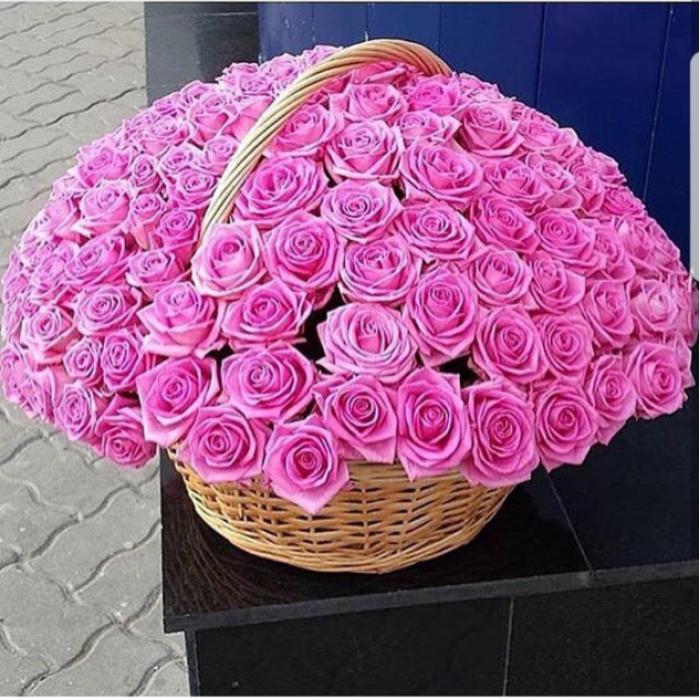 101 розовая роза в корзине R023