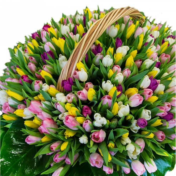 Корзина 1001 разноцветный тюльпан R993