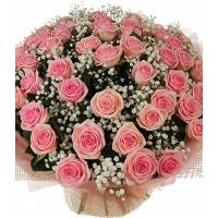 Букет из 51 розовой розы с ветками гипсофилы R88