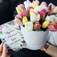19 розовых тюльпанов в коробке R012
