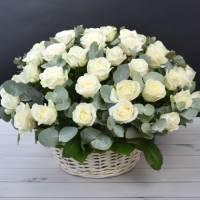 Корзина 39 крупных белых роз с зеленью R487