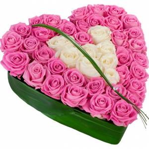39 белых и розовых роз сердцем R512