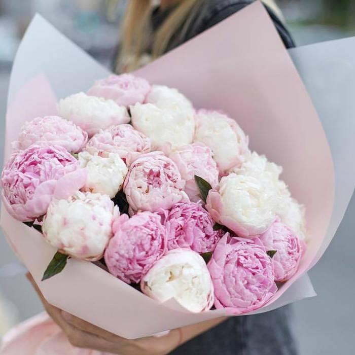 Нежный букет 17 розовых пионов R633