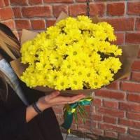 Букет 11 веток желтой хризантемы в крафте R002